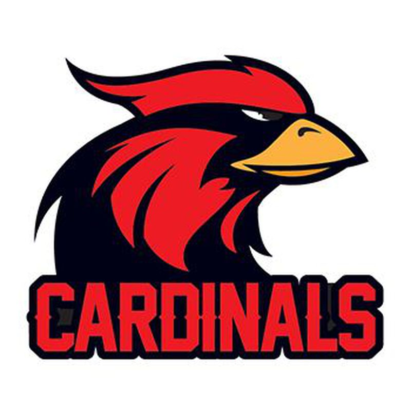 Cardinals Temporary Tattoo image number null