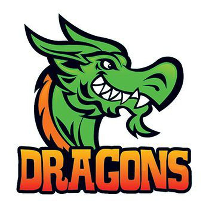 Dragons Sports Temporary Tattoo image number null