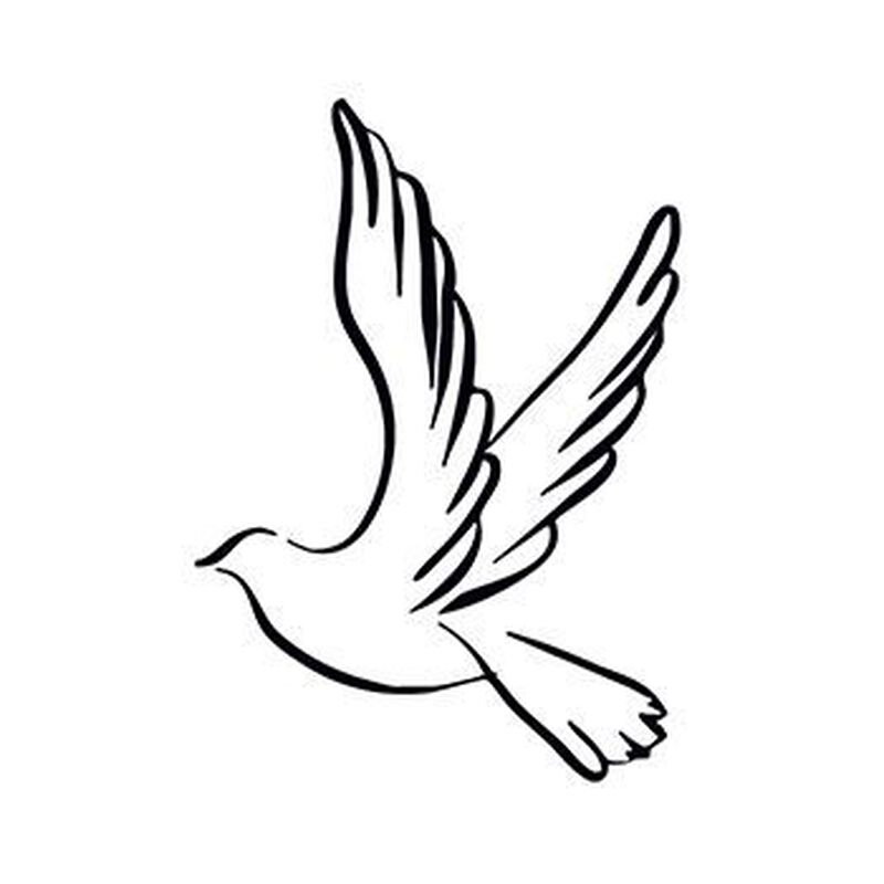 Dove Temporary Tattoo image number null