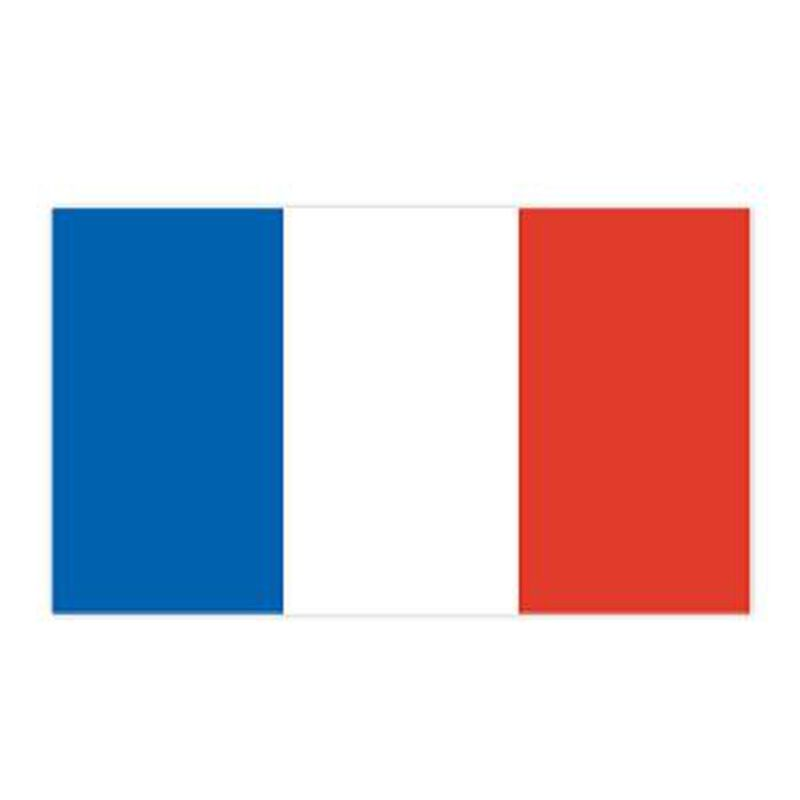 France Flag Temporary Tattoo image number null
