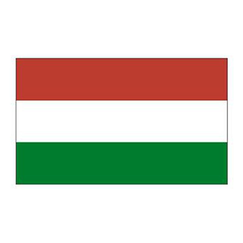 Hungary Flag Temporary Tattoo image number null