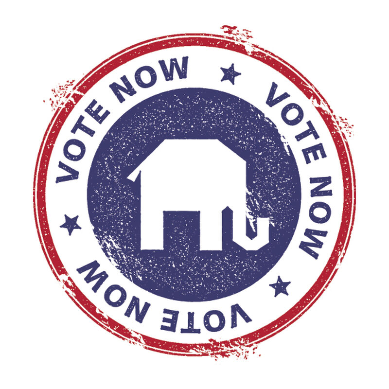 Republican Vote Now Temporary Tattoo image number null