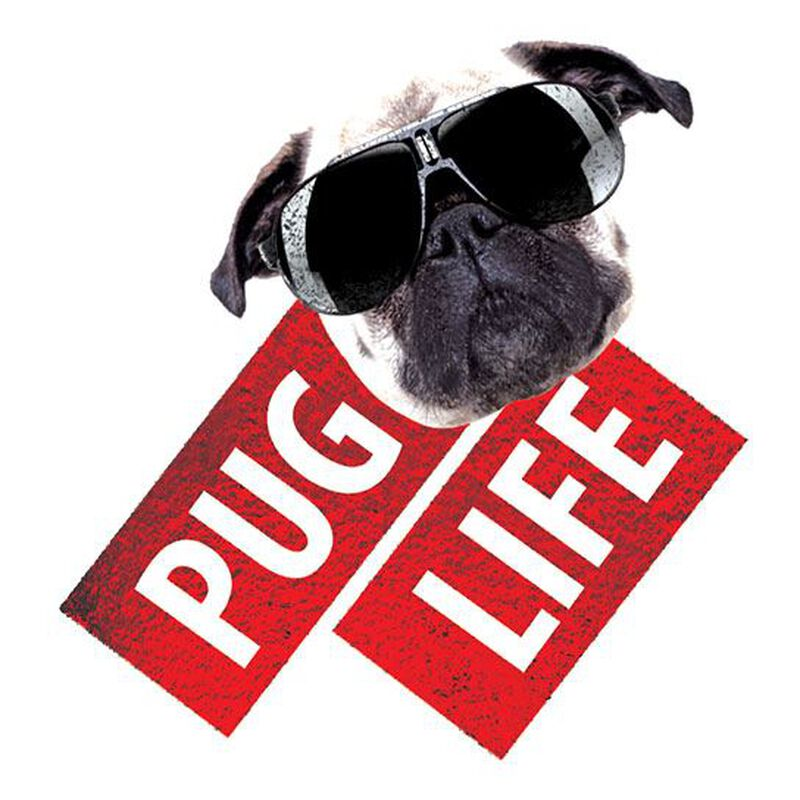 Pug Life Metallic Temporary Tattoo image number null