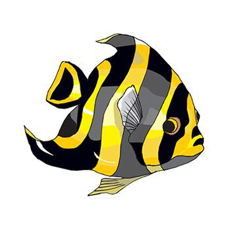 Yellow Fish Temporary Tattoo image number null