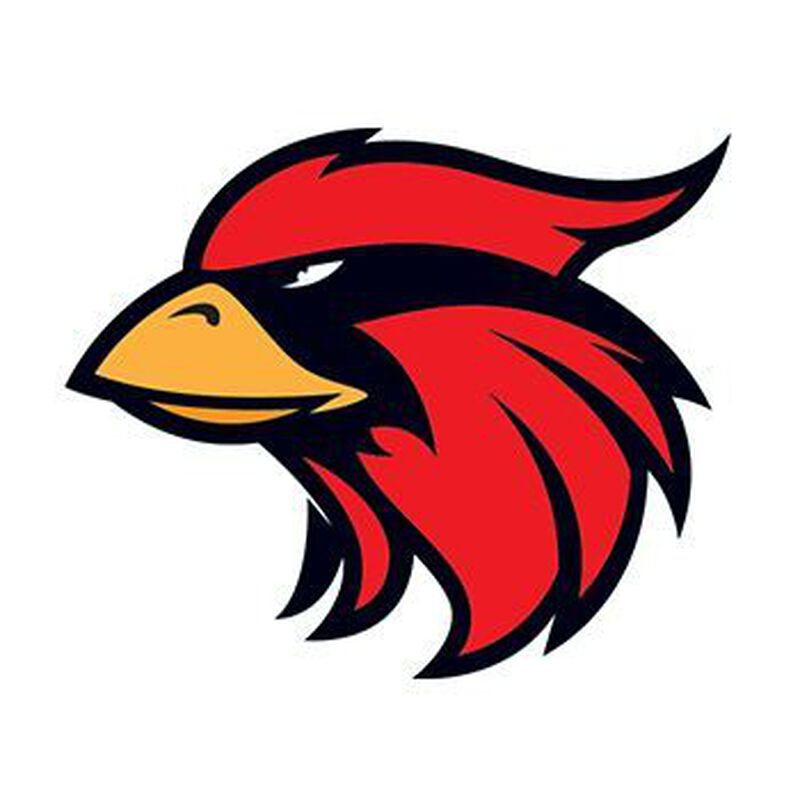 Small Cardinal Mascot Temporary Tattoo image number null