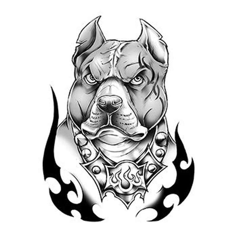 Urban Pit Bull Temporary Tattoo image number null