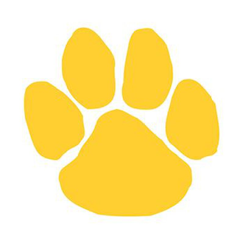 Yellow Mascot Paw Print Temporary Tattoo image number null