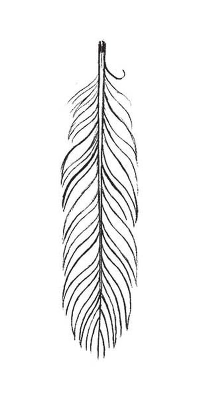 Sketch Feather Temporary Tattoo image number null
