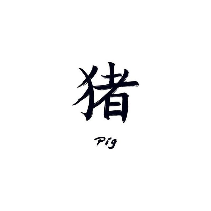 Chinese Zodiac: Pig Temporary Tattoo image number null