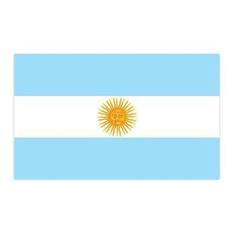 Argentina Flag Temporary Tattoo image number null