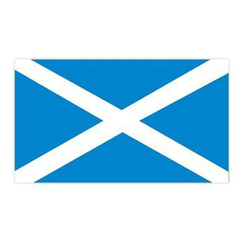 Scotland Flag Temporary Tattoo image number null