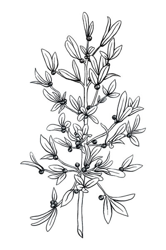 Black and White Mistletoe Temporary Tattoo image number null