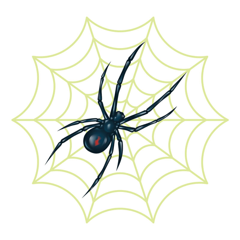 Spider with Reveal Glow-in-the-dark Web Temporary Tattoo image number null