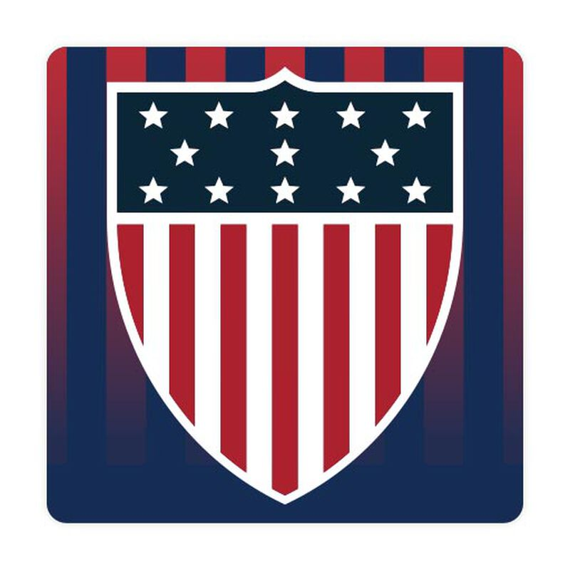 team usa shield sticker with usa flag image number null