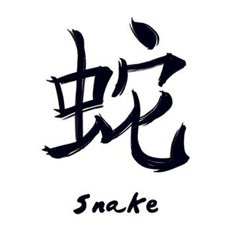 Chinese Zodiac: Snake Temporary Tattoo image number null
