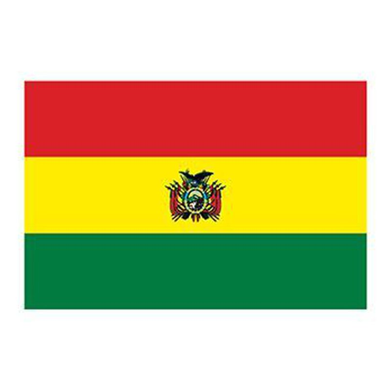 Bolivia Flag Temporary Tattoo image number null