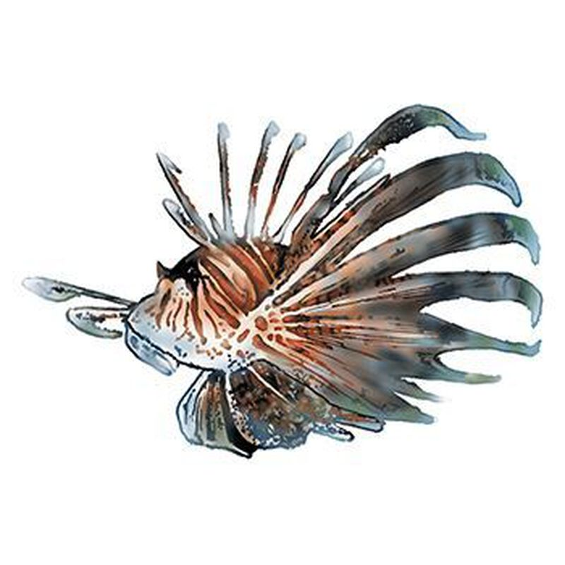 Spiny Fish Temporary Tattoo image number null