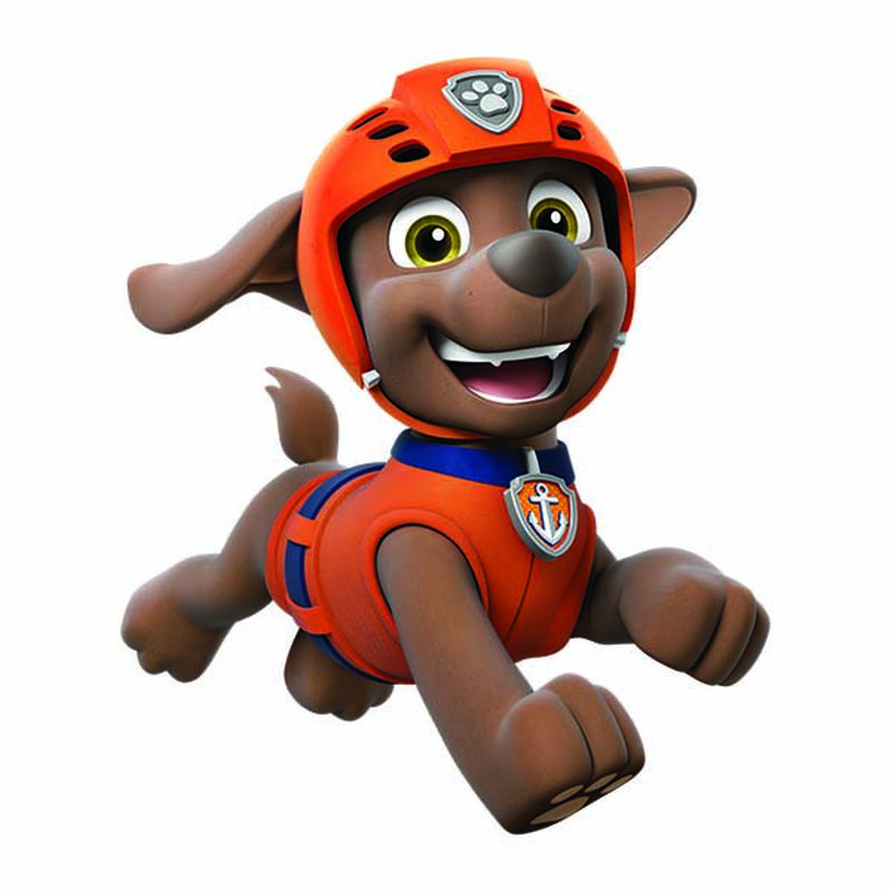 PAW Patrol Zuma Temporary Tattoo image number null