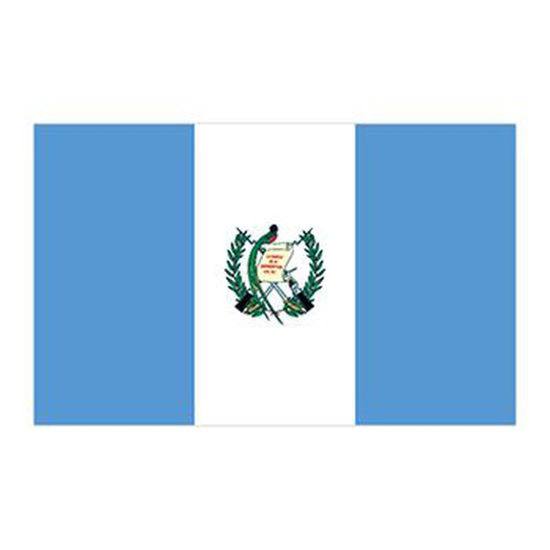 Flag of Guatemala Temporary Tattoo image number null