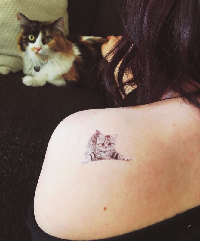 Gray Cat Temporary Tattoo image number null
