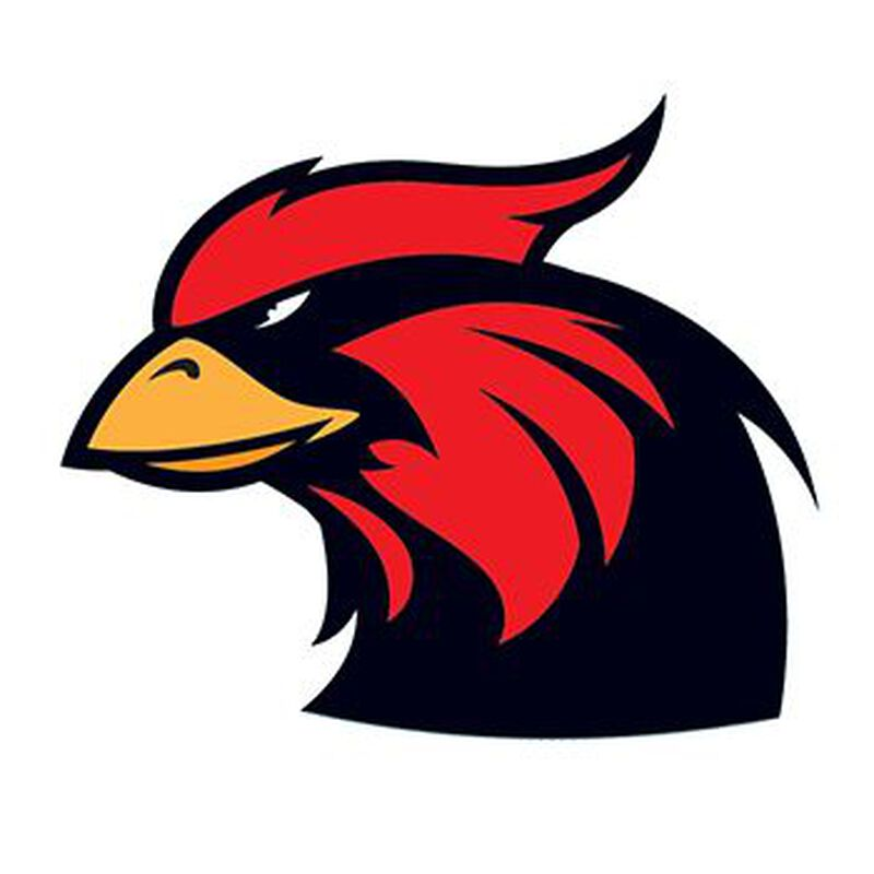 Cardinal Mascot Temporary Tattoo image number null
