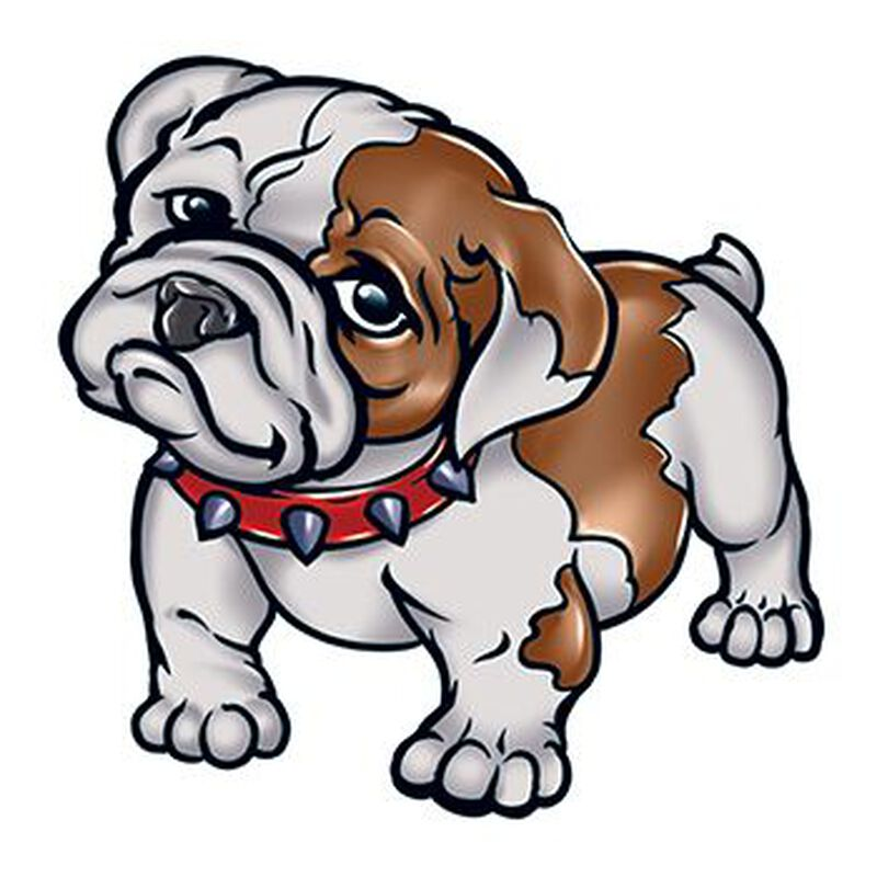 Cute Bulldog Temporary Tattoo image number null