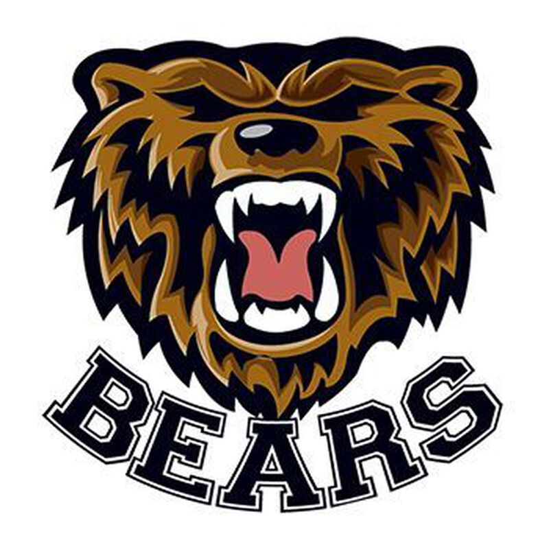 Bears Mascot Temporary Tattoo image number null