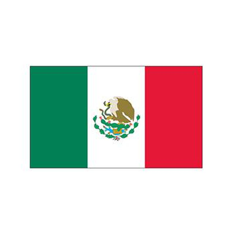 Mexico Flag Temporary Tattoo image number null