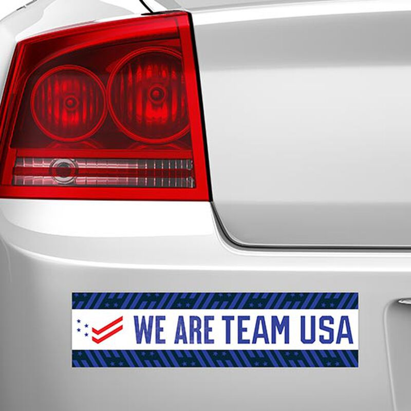 we are team usa bumper sticker on car image number null