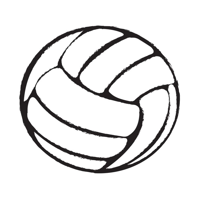 Volleyball Temporary Tattoo image number null