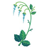 Blue Bells Ringing Floral Temporary Tattoo