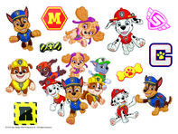 PAW Patrol Temporary Tattoo Sheet