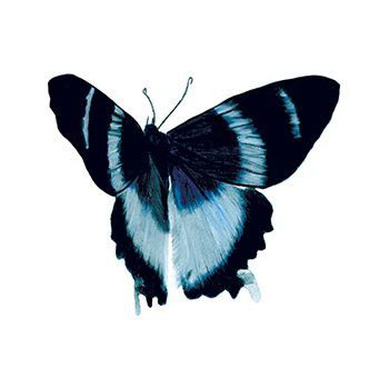 Blue Elegance Butterfly Temporary Tattoo image number null