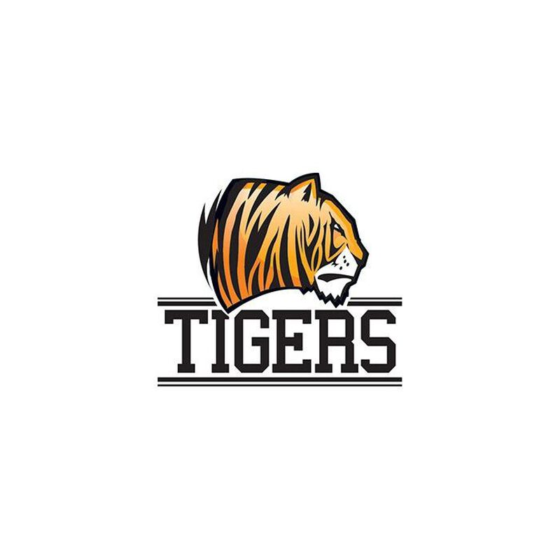Tigers Team Temporary Tattoo image number null