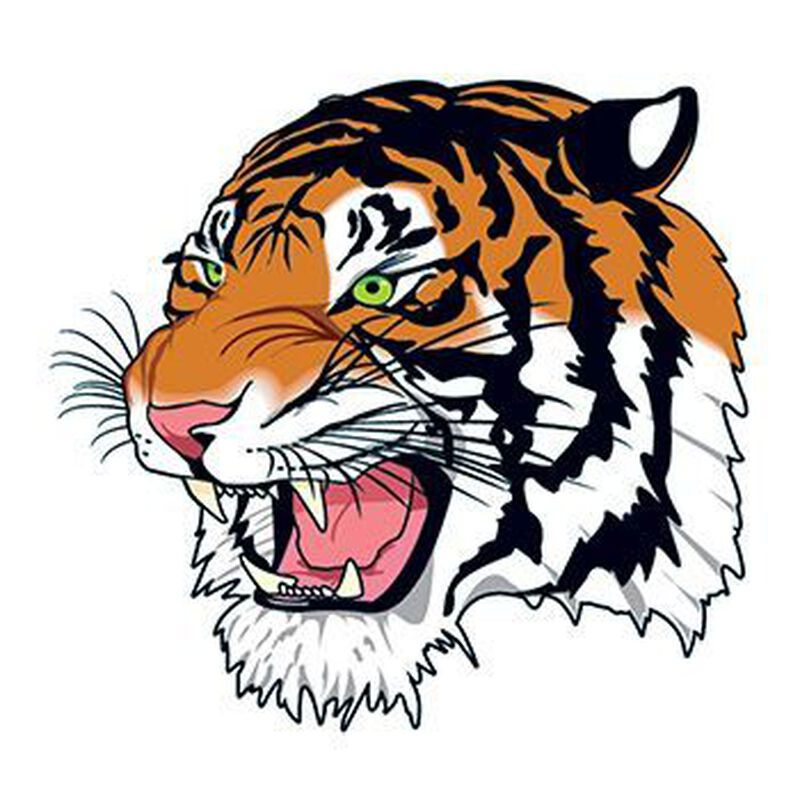 Snarling Bengal Tiger Face Temporary Tattoo image number null