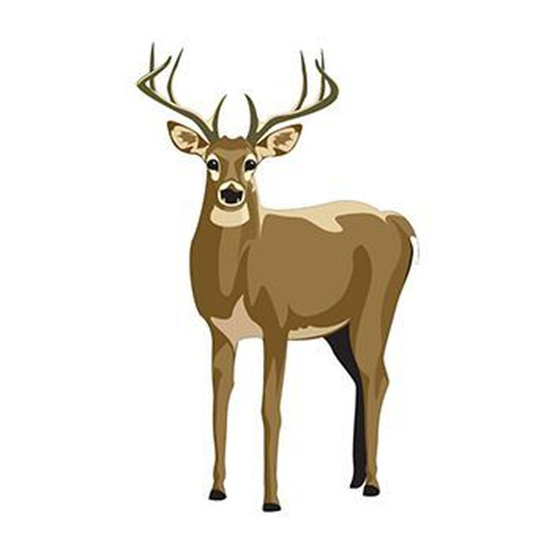 Deer Temporary Tattoo image number null