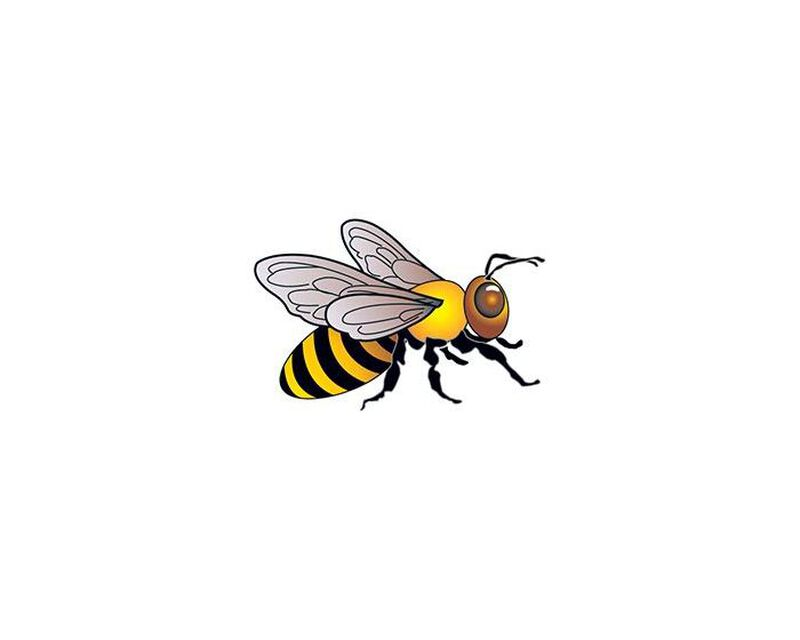 Bee Temporary Tattoo image number null