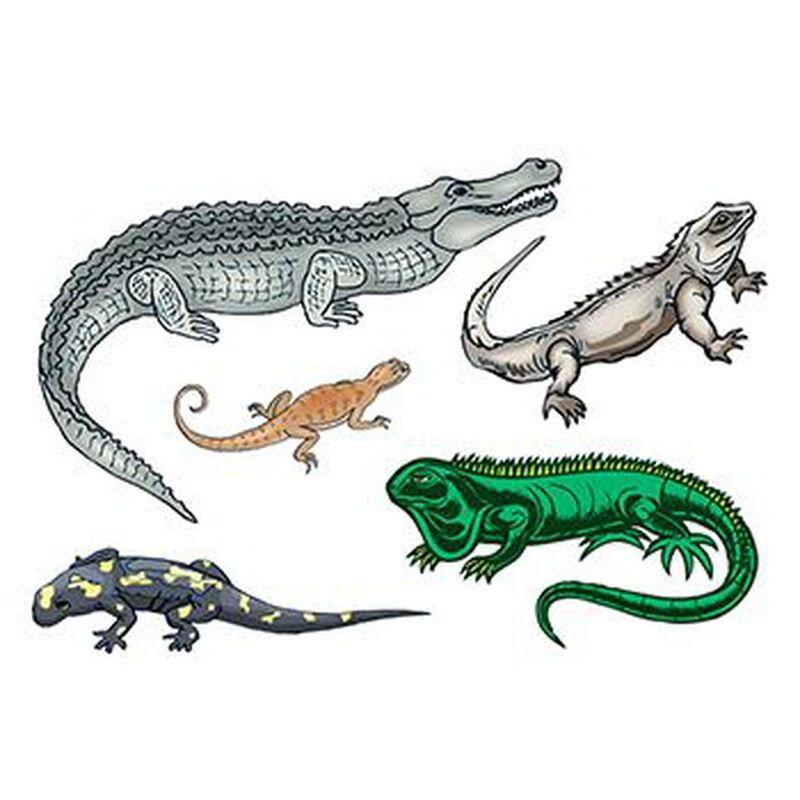 Reptiles Set of Temporary Tattoos image number null
