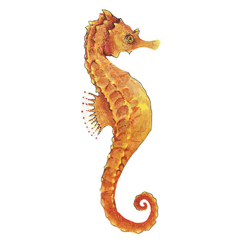 Realistic Seahorse Temporary Tattoo image number null