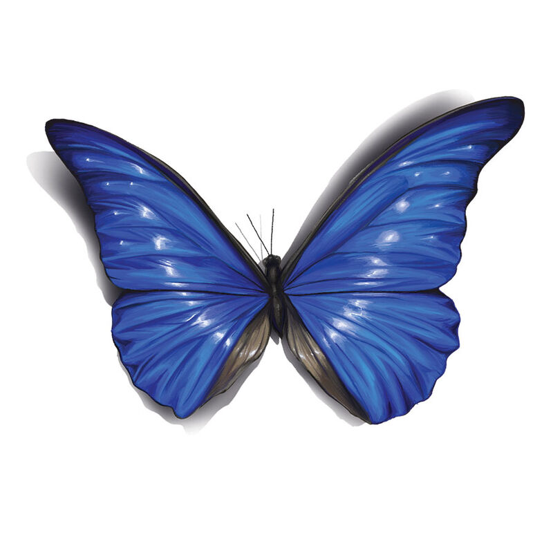 Royal Blue 3D Butterfly Temporary Tattoo image number null