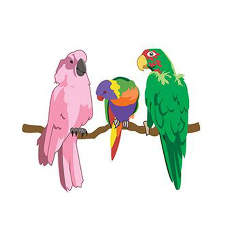 Parrots Temporary Tattoo image number null