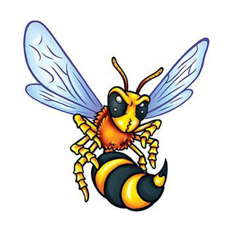 Small Hornets Temporary Tattoo image number null
