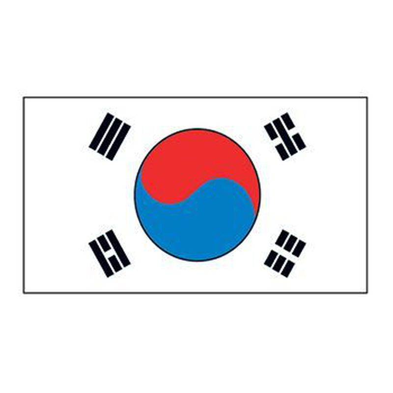 Korea Flag Temporary Tattoo image number null