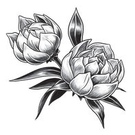 Gray Tulip Temporary Tattoo