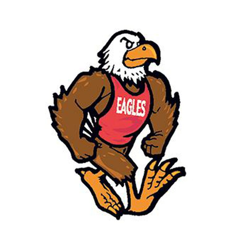 Eagle Mascot Temporary Tattoo image number null