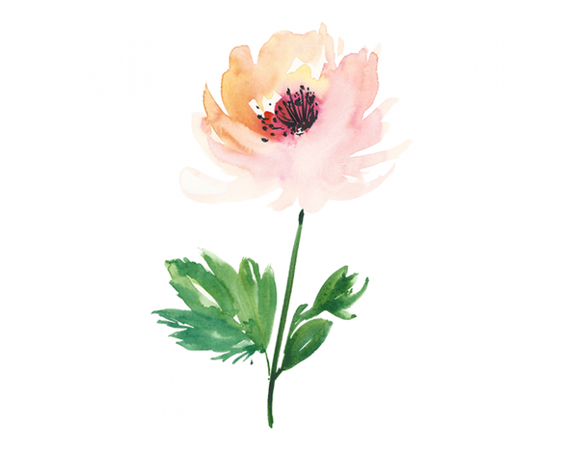 Watercolor Flower Temporary Tattoo image number null