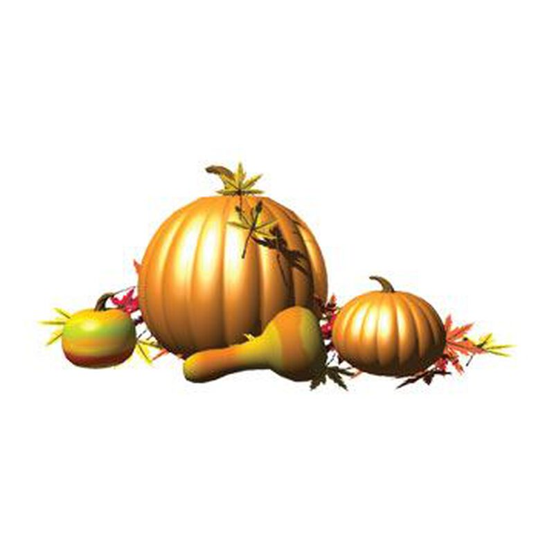 Gourds Temporary Tattoo image number null