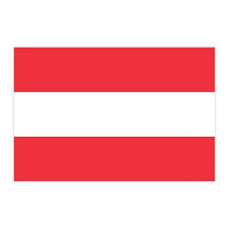 Austria Flag Temporary Tattoo image number null