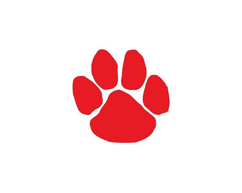 Red Paw Print Temporary Tattoo image number null