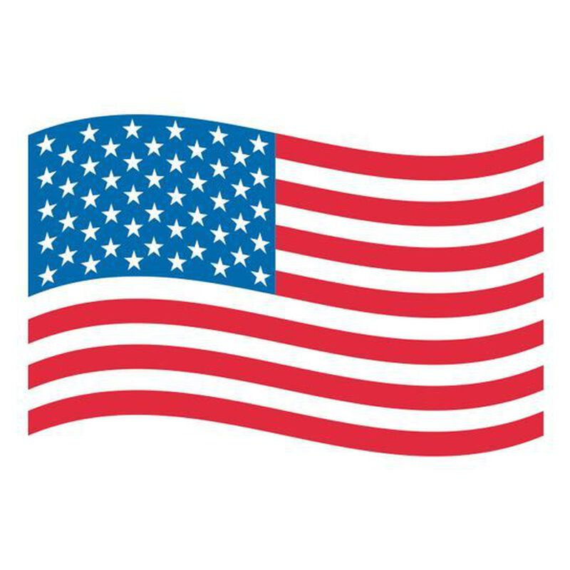 American Flag Temporary Tattoo image number null